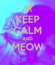keep-calm-and-meow-780